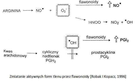 flawonoidy - leczniecze działanie